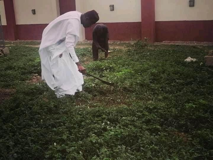 Borno's youngest emir, the Shehu of Bama was seen cutting grasses